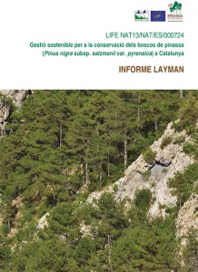 Sustainable management for conservation of Black Pine forests in Catalunya